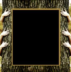 costomframe frame freetoedit edited