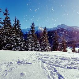 snow winter holiday snowman freetoedit