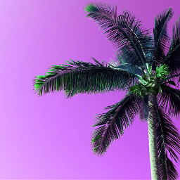 beach colorful colorsplash