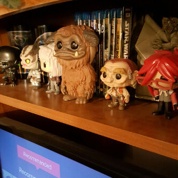 dpcmyhome funko funkos collection labyrinth