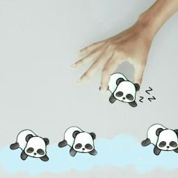 freetoedit pandacloudremix