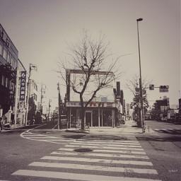 street route254 japan