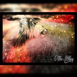 freetoedit editing editforme lion