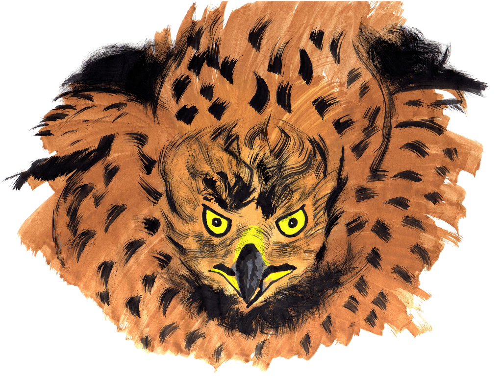 #FreeToEdit #ftestickers #bird #angry