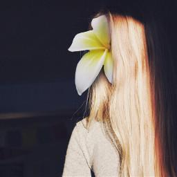 freetoedit art edited bloom flower