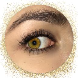 makeup eyeshadow eyebrows lashes girl freetoedit