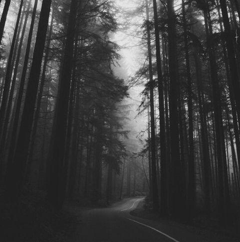 tumblr post notmine blackandwhite photography