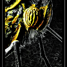 butterfly neoneffect colorsplash madewithpicsart insect