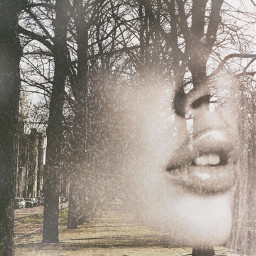 face model trees softcolors doublrexposure freetoedit