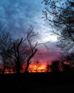 sunrise nature freetoedit photography